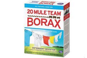 Le borax un super produit à découvrir